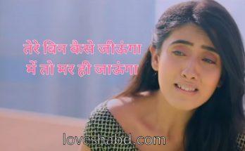 Sad hindi love shayari