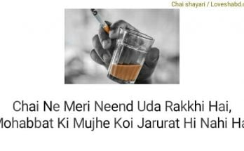 Chai shayari written in hindi text on a photo of cup of tea
